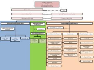 organograma-praia-ambiente-e-m